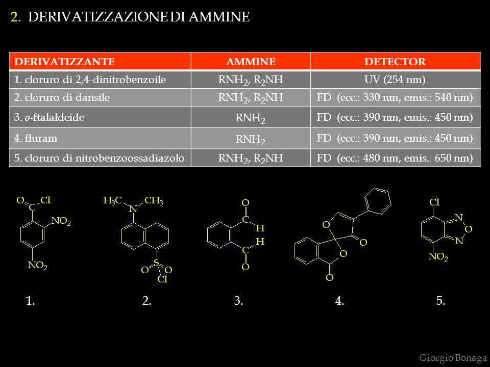 Giorgio Bonaga 2. DERIVATIZZAZIONE DI AMMINE DERIVATIZZANTEAMMINEDETECTOR 1. cloruro di 2,4-dinitrobenzoileRNH 2, R 2 NHUV (254 nm) 2. cloruro di dans