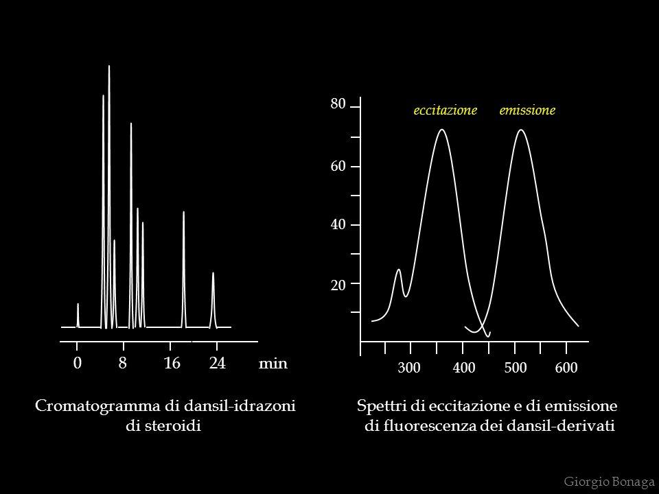 Giorgio Bonaga 0 8 16 24 min Cromatogramma di dansil-idrazoni di steroidi 20 300 400 500 600 40 60 80 eccitazione emissione Spettri di eccitazione e di emissione di fluorescenza dei dansil-derivati