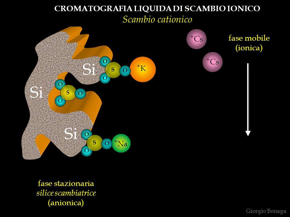 fase stazionaria silice scambiatrice (anionica) fase mobile (ionica) CROMATOGRAFIA LIQUIDA DI SCAMBIO IONICO Scambio cationico + + Na +K+K Giorgio Bonaga Si O O S O - O O S O O S + Cs