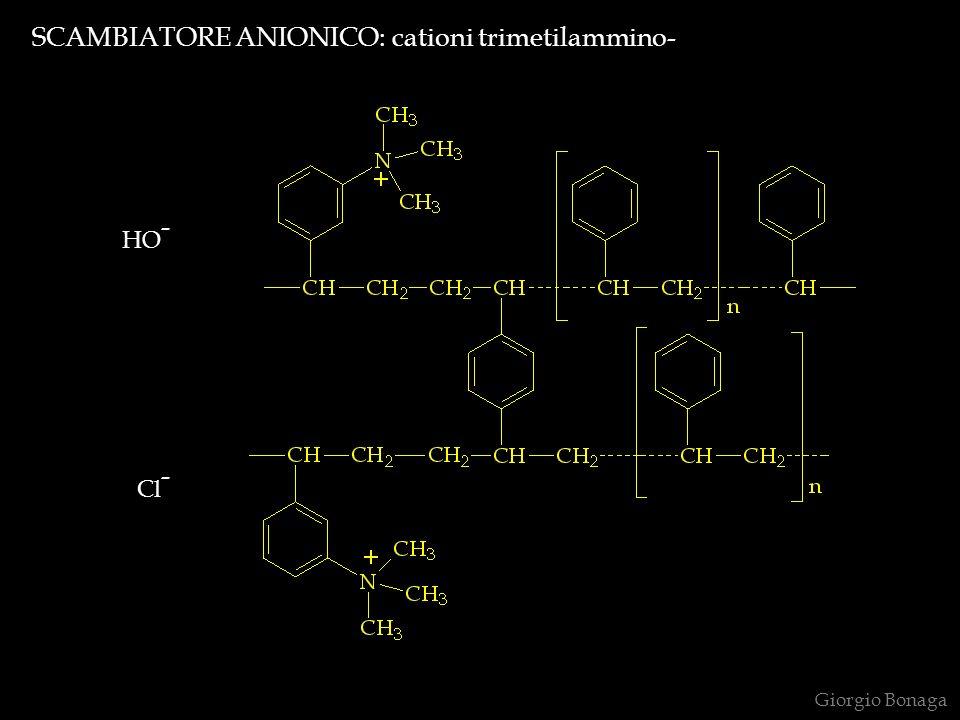 SCAMBIATORE ANIONICO: cationi trimetilammino- HO - Cl - Giorgio Bonaga