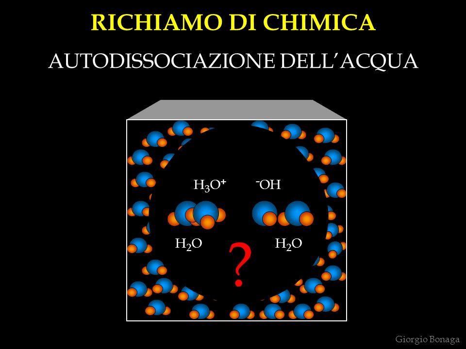 HBr HCl H 2 O HF NaBr NaCl NaOH NaF H+H+ H+H+ H2OH2O H2OH2O H2OH2O H2OH2O Na + H+H+ H+H+ Cl – H+H+ H+H+ Cl - H + Cl - H + Cl - H + Cl - Na + Cl - Na + Cl - NaOH Na + - OH SOPPRESSORE A FIBRA - ANIONI - OH F - Cl - Br - Giorgio Bonaga