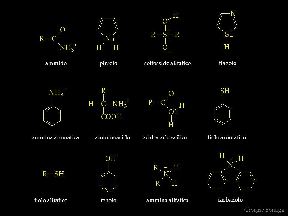 Giorgio Bonaga pirroloammidetiazolosolfossido alifatico ammina aromaticaamminoacidoacido carbossilicotiolo aromatico tiolo alifaticofenoloammina alifatica carbazolo