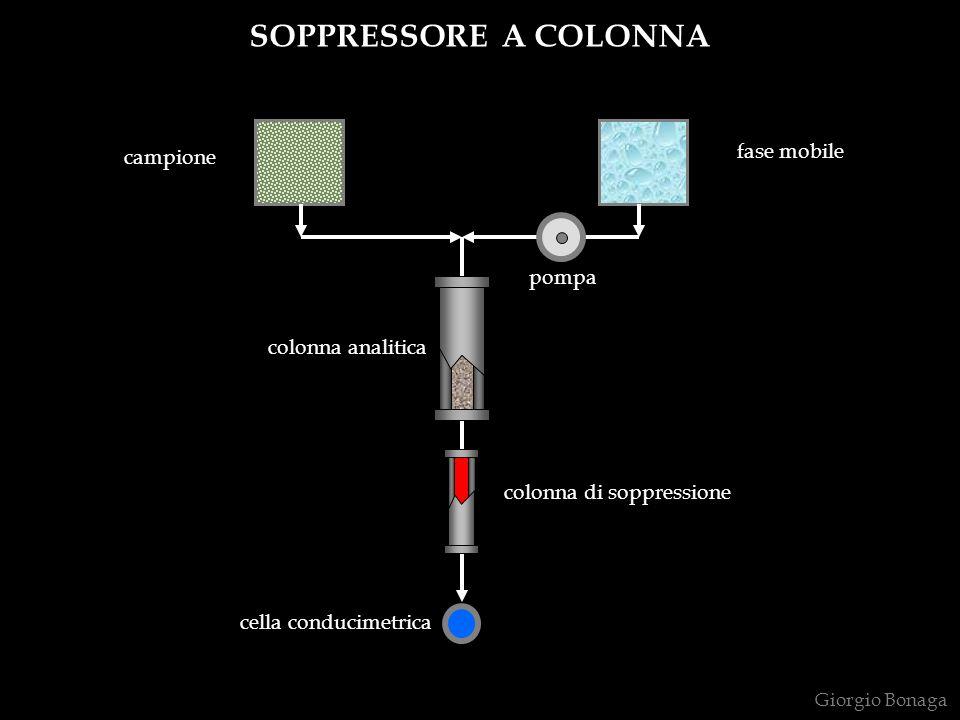 Giorgio Bonaga SOPPRESSORE A COLONNA colonna analitica colonna di soppressione pompa cella conducimetrica fase mobile campione