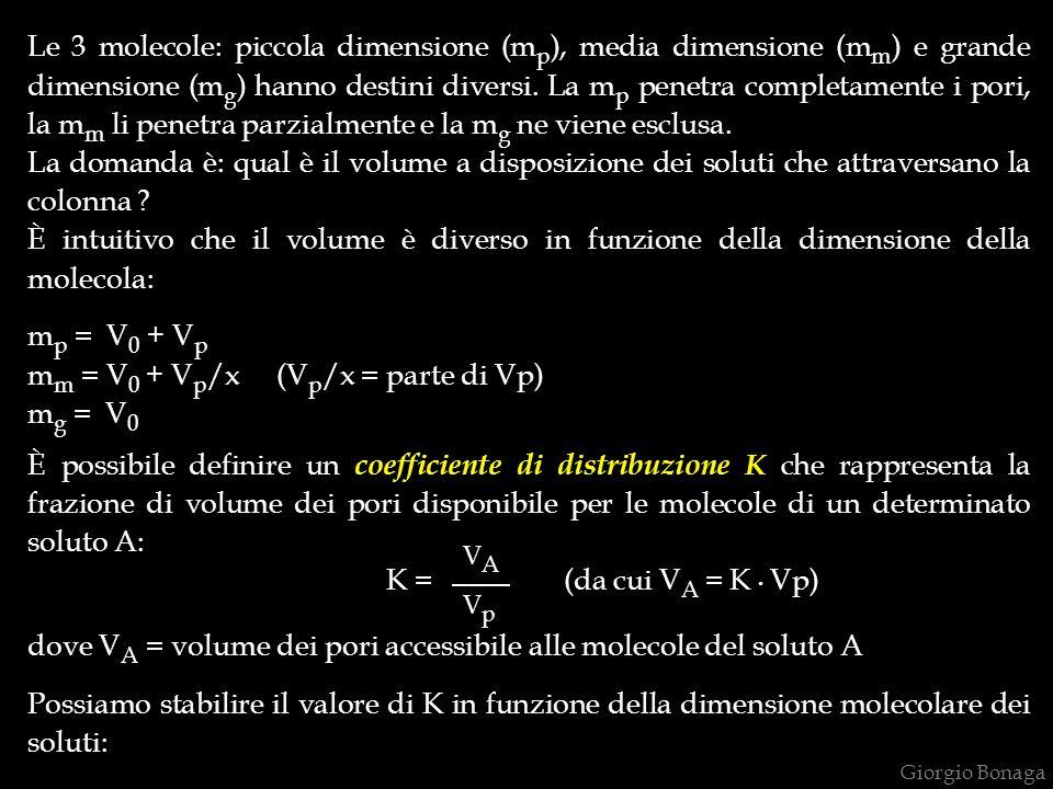 Giorgio Bonaga Le 3 molecole: piccola dimensione (m p ), media dimensione (m m ) e grande dimensione (m g ) hanno destini diversi. La m p penetra comp