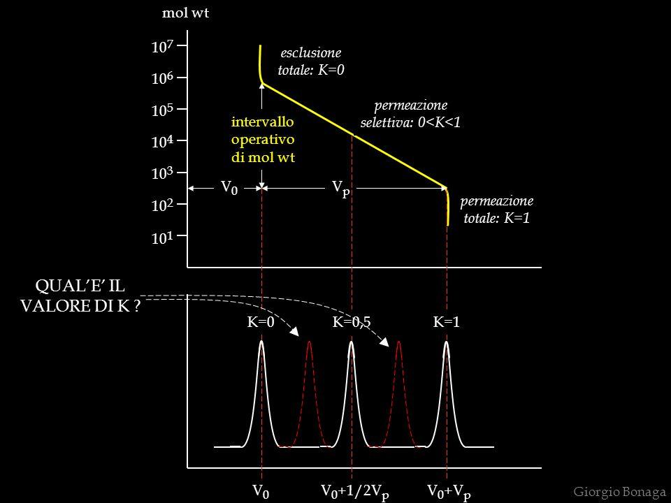 Giorgio Bonaga 10 1 10 2 10 3 10 7 10 4 10 6 10 5 V0V0 VpVp intervallo operativo di mol wt permeazione totale: K=1 esclusione totale: K=0 permeazione selettiva: 0<K<1 mol wt K=0K=0,5K=1 V0V0 V 0 +1/2V p V 0 +V p QUALE IL VALORE DI K ?