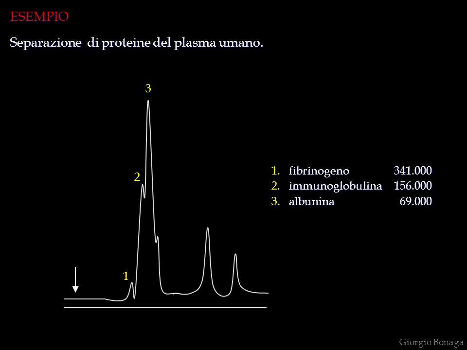 Giorgio Bonaga 1.fibrinogeno 341.000 2.immunoglobulina 156.000 3.albunina 69.000 1.fibrinogeno 341.000 2.immunoglobulina 156.000 3.albunina 69.000 ESE