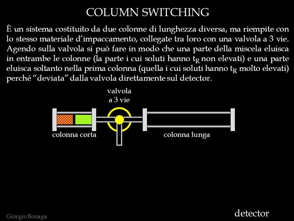 Giorgio Bonaga COLUMN SWITCHING È un sistema costituito da due colonne di lunghezza diversa, ma riempite con lo stesso materiale dimpaccamento, collegate tra loro con una valvola a 3 vie.
