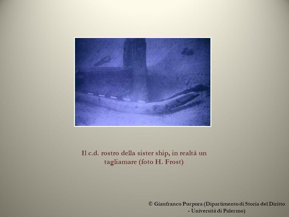 © Gianfranco Purpura (Dipartimento di Storia del Diritto - Università di Palermo) Il c.d.