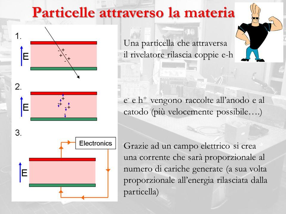Particelle attraverso la materia Una particella che attraversa il rivelatore rilascia coppie e-h e - e h + vengono raccolte allanodo e al catodo (più