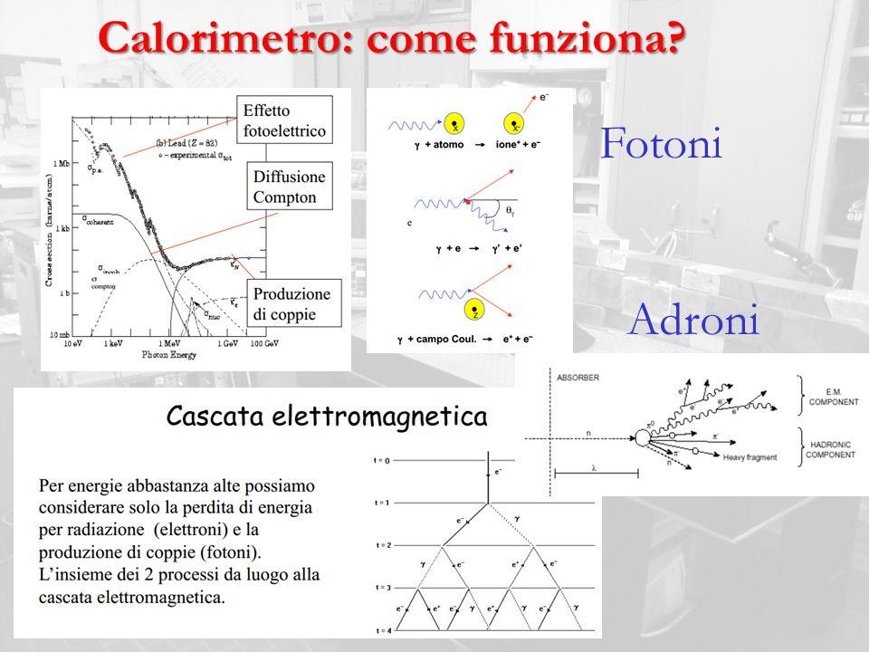 Calorimetro: come funziona? Fotoni Adroni