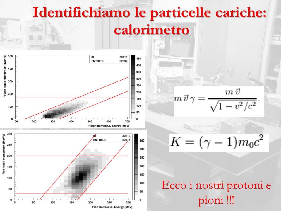 Identifichiamo le particelle cariche: calorimetro calorimetro Ecco i nostri protoni e pioni !!!