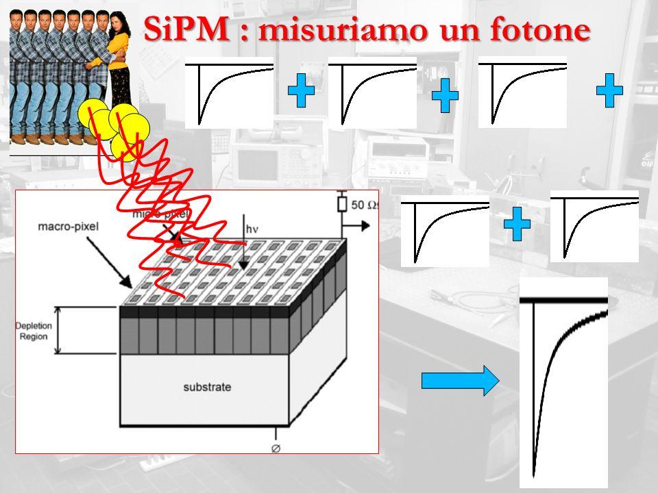 SiPM : misuriamo un fotone