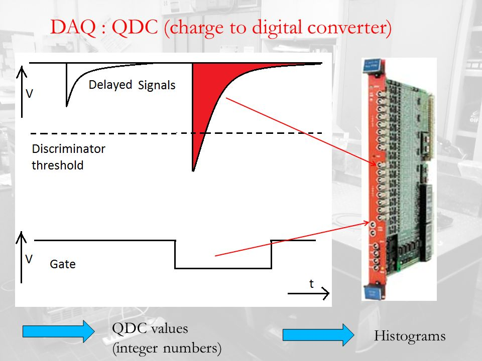 DAQ : QDC (charge to digital converter) QDC values (integer numbers) Histograms