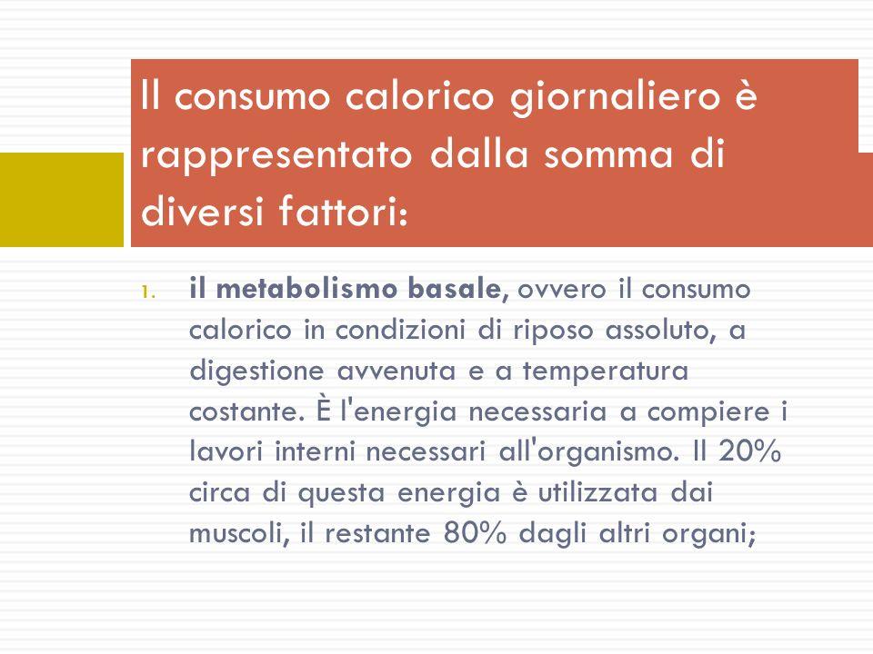 1. il metabolismo basale, ovvero il consumo calorico in condizioni di riposo assoluto, a digestione avvenuta e a temperatura costante. È l'energia nec