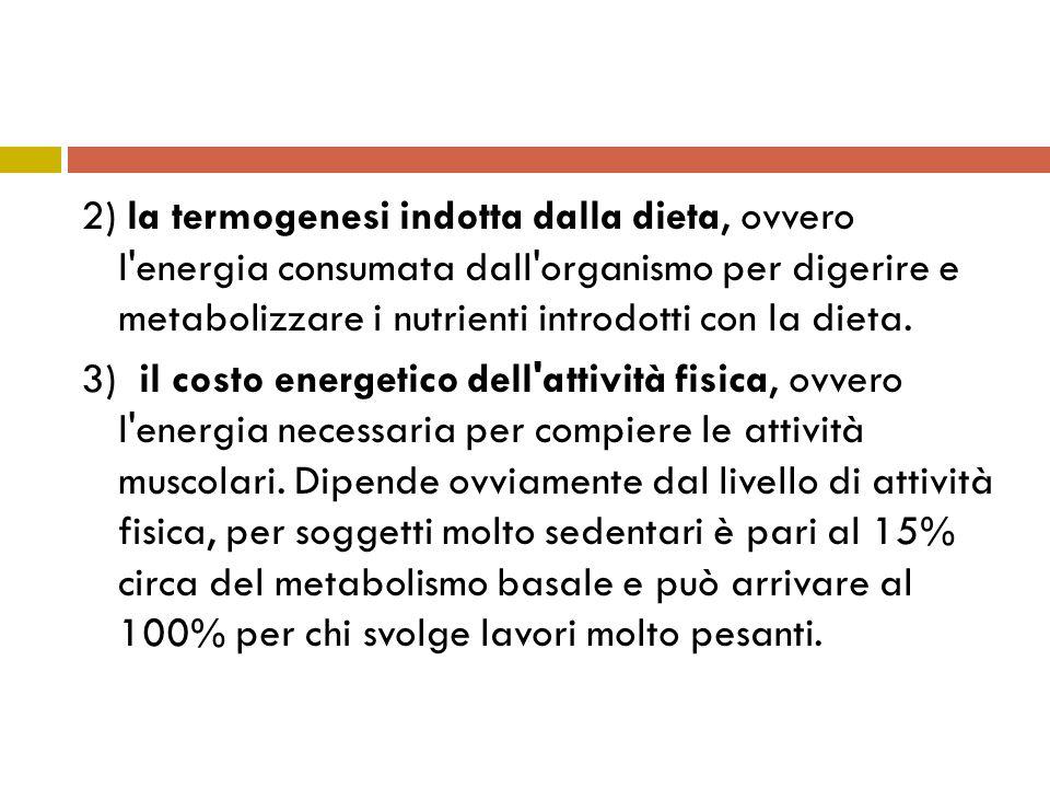2) la termogenesi indotta dalla dieta, ovvero l'energia consumata dall'organismo per digerire e metabolizzare i nutrienti introdotti con la dieta. 3)