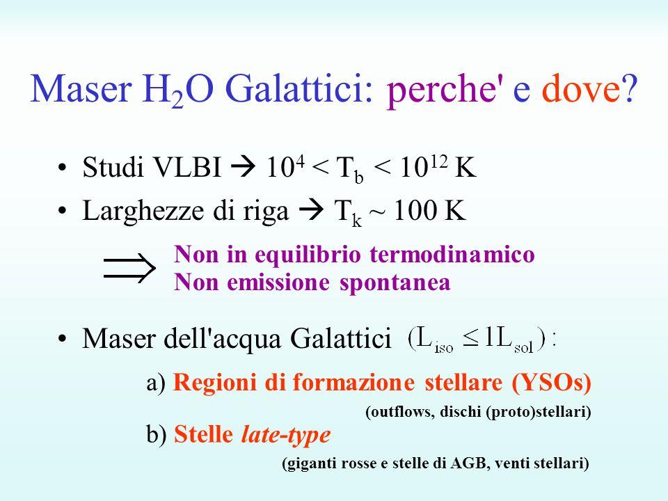 Maser H 2 O Galattici: perche e dove.