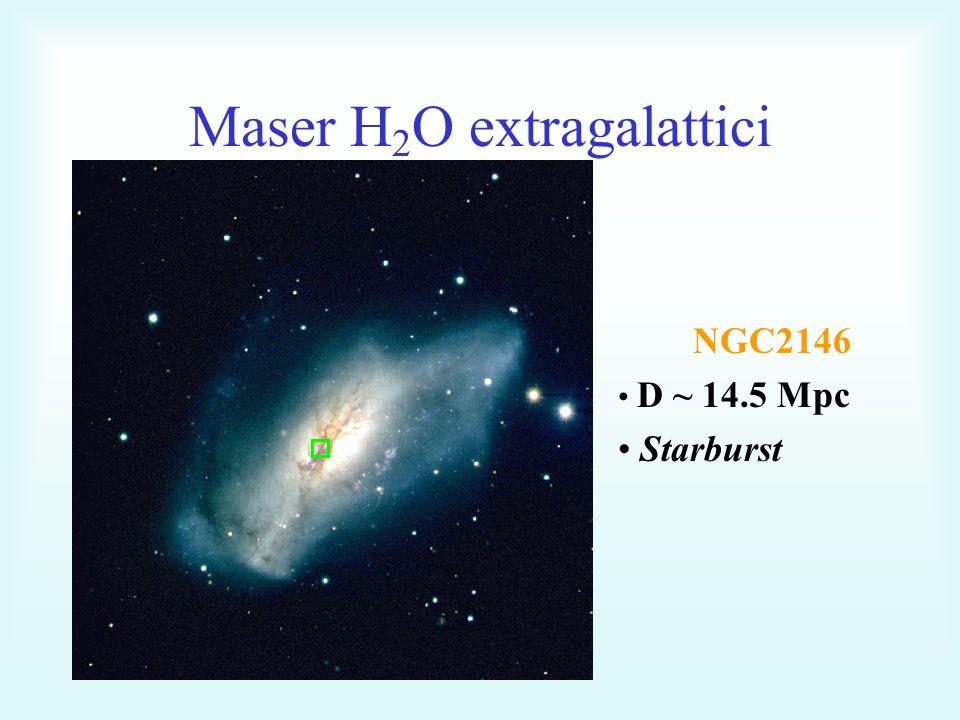 Maser H 2 O extragalattici NGC2146 D ~ 14.5 Mpc Starburst