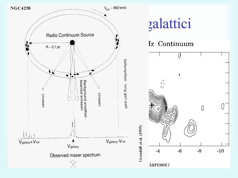 Maser H 2 O extragalattici Megamasers L iso > 10 L sol Dischi di accrescimentoGetti Claussen et al.