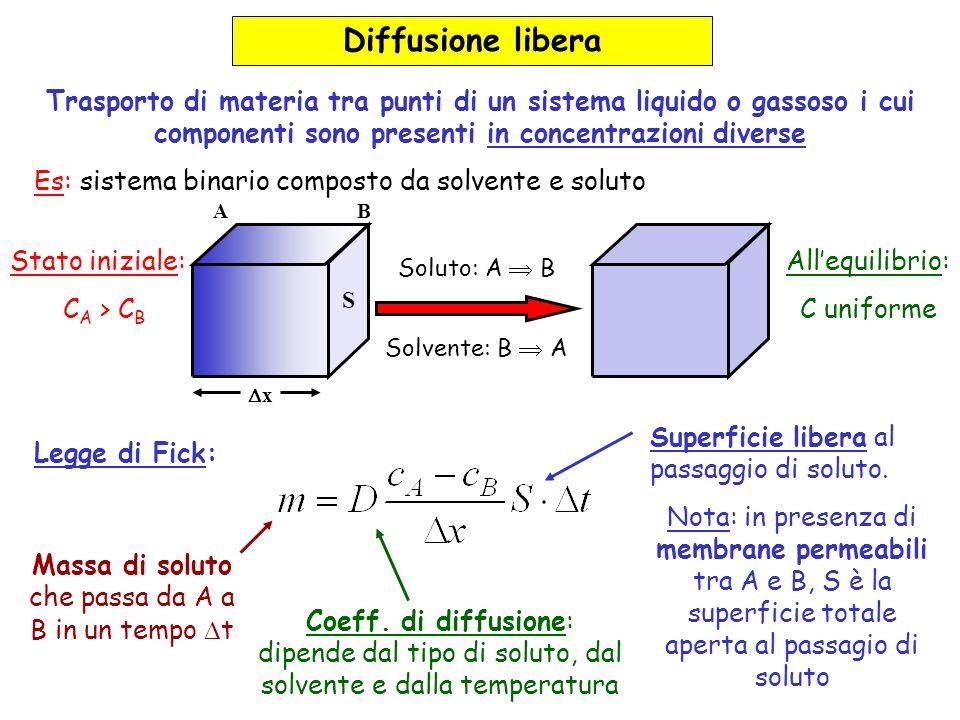 Diffusione libera Trasporto di materia tra punti di un sistema liquido o gassoso i cui componenti sono presenti in concentrazioni diverse Es: sistema