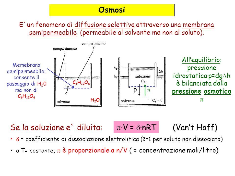 Osmosi E`un fenomeno di diffusione selettiva attraverso una membrana semipermeabile (permeabile al solvente ma non al soluto). H2OH2O C 6 H 12 O 6 Mem
