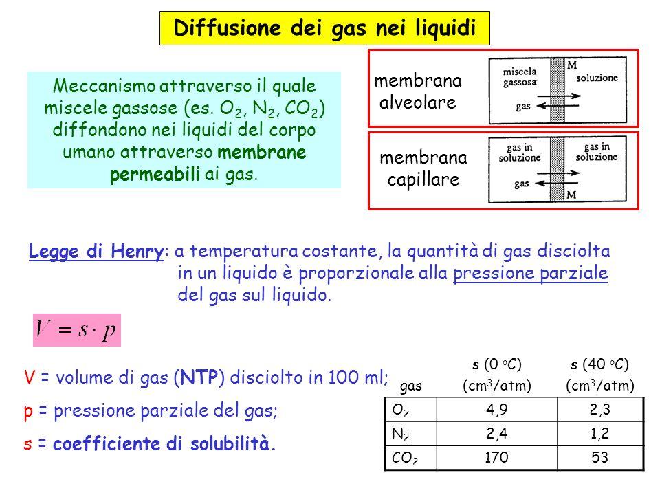 Diffusione di gas nei sistemi biologici approvvigionamento di O 2 eliminazione di CO 2 aria alveolare gasfrazione molarepressione parziale N2N2 80,4 %573 mmHg O2O2 14,0 %100 mmHg CO 2 5,6 %40 mmHg H2OH2Ovapor saturo47 mmHg Totale 760 mmHg Esempio: diffusione attraverso la membrana alveolare Il volume di N 2 disciolto in 100 ml di sangue è (legge di Henry): Per un individuo di massa pari ad 80 kg (67 % di H 2 O): Nota: il volume di azoto disciolto nel sangue aumenta durante le immersioni subacquee e viene eliminato durante la risalita.