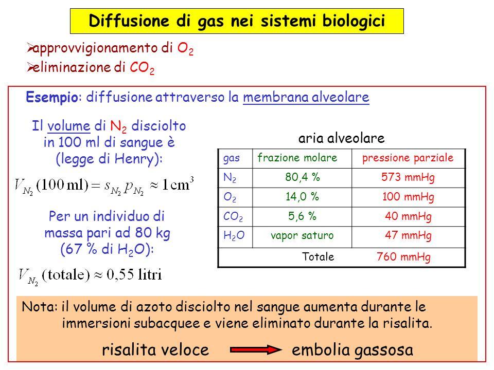 Diffusione di gas nei sistemi biologici approvvigionamento di O 2 eliminazione di CO 2 aria alveolare gasfrazione molarepressione parziale N2N2 80,4 %