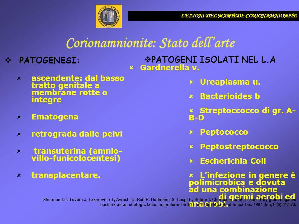 LEZIONI DEL MARTEDI: CORIONAMNIOnITE Corionamnionite: Stato dellarte Fahey JO.