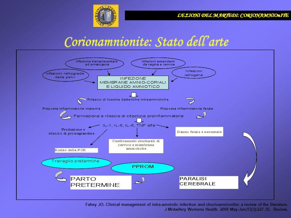 LEZIONI DEL MARTEDI: CORIONAMNIOnITE Corionamnionite: Stato dellarte FATTORI DI RISCHIO : Nulliparità travaglio pretermine, prolungata rottura delle membrane (corionamnionite istologicamente diagnosticata nel 60-80% di PROM di 34) elettrodi applicati sullo scalpo fetale, infezioni urogenitali comprese le malattie sessualmente trasmesse catetere intrauterino visite vaginali ripetute e specialmete in caso di PROM LA tinto cerchiaggio cervicale fattori materni predisponenti alle infezioni (malattie croniche materne, statu nutrizionale ecc) COMPLICANZE MATERNE - batteriemia 5-10% - antepartum : aumentato ricorso ad utilizzo di ossitocina durante il travaglio, e un utilizzo di maggior quantità di questo farmaco, maggior frequenza di ricorso a taglio cesareo.