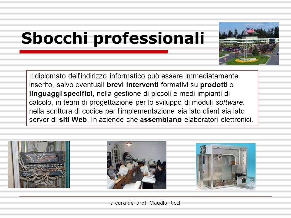 a cura del prof. Claudio Ricci Sbocchi professionali Il diplomato dell'indirizzo informatico può essere immediatamente inserito, salvo eventuali brevi