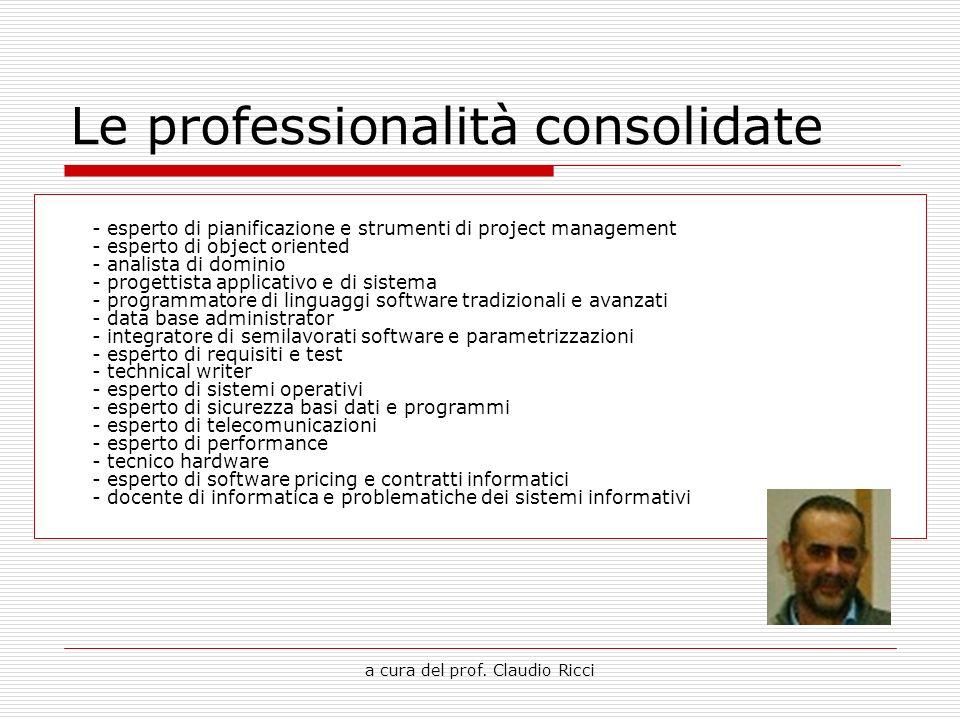 a cura del prof. Claudio Ricci Le professionalità consolidate - esperto di pianificazione e strumenti di project management - esperto di object orient