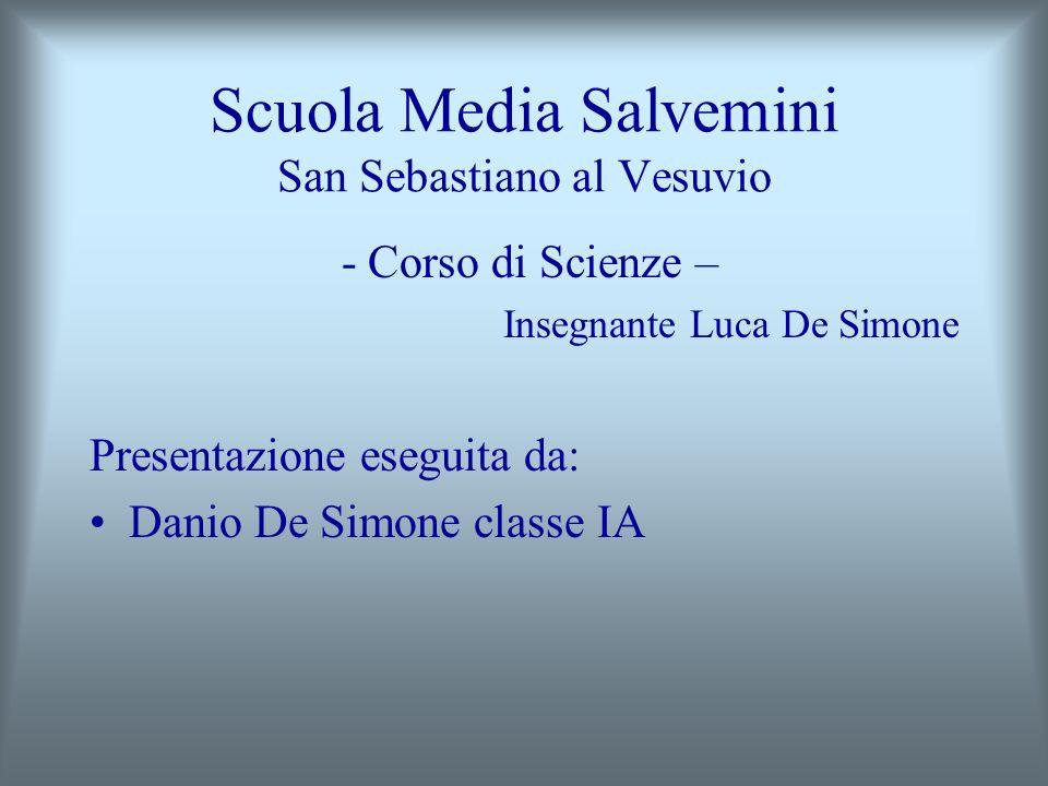 Scuola Media Salvemini San Sebastiano al Vesuvio - Corso di Scienze – Insegnante Luca De Simone Presentazione eseguita da: Danio De Simone classe IA