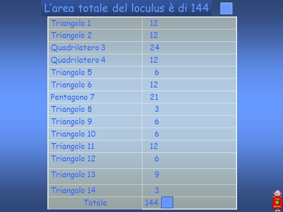 Larea totale del loculus è di 144 Triangolo 1 12 Triangolo 2 12 Quadrilatero 3 24 Quadrilatero 4 12 Triangolo 5 6 Triangolo 6 12 Pentagono 7 21 Triang