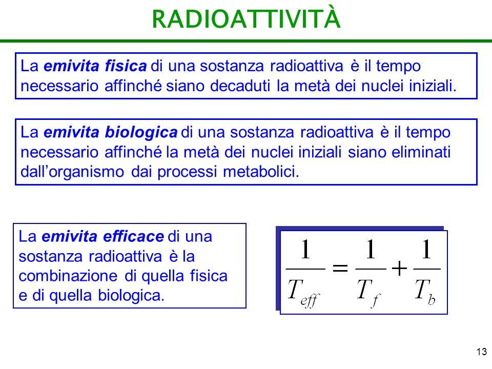 13 RADIOATTIVITÀ La emivita fisica di una sostanza radioattiva è il tempo necessario affinché siano decaduti la metà dei nuclei iniziali. La emivita e