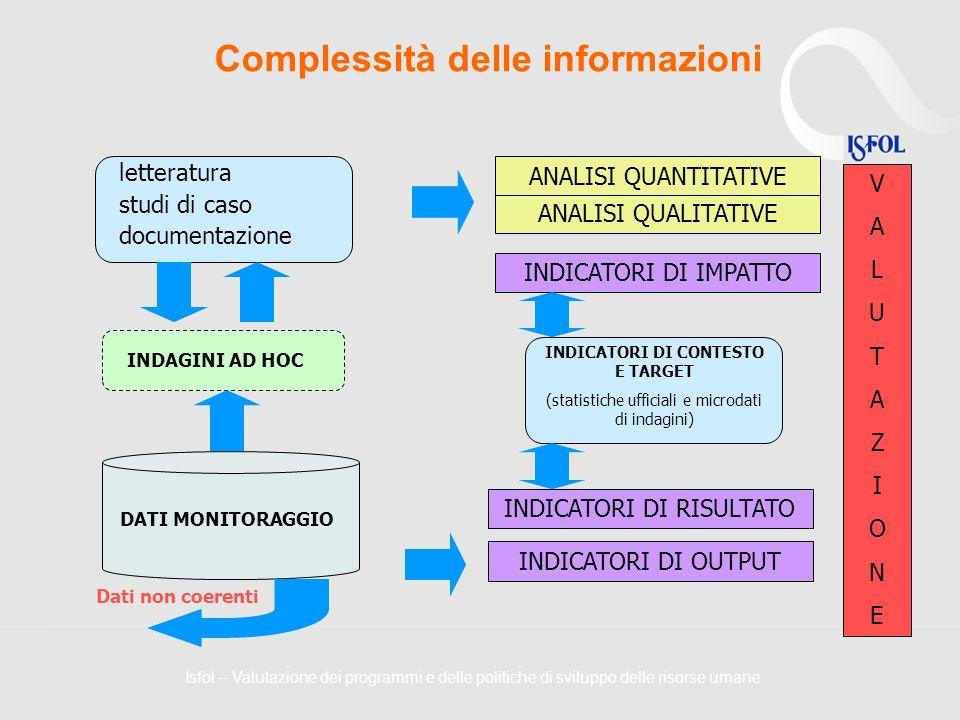 Complessità delle informazioni INDAGINI AD HOC INDICATORI DI CONTESTO E TARGET (statistiche ufficiali e microdati di indagini) INDICATORI DI OUTPUT IN