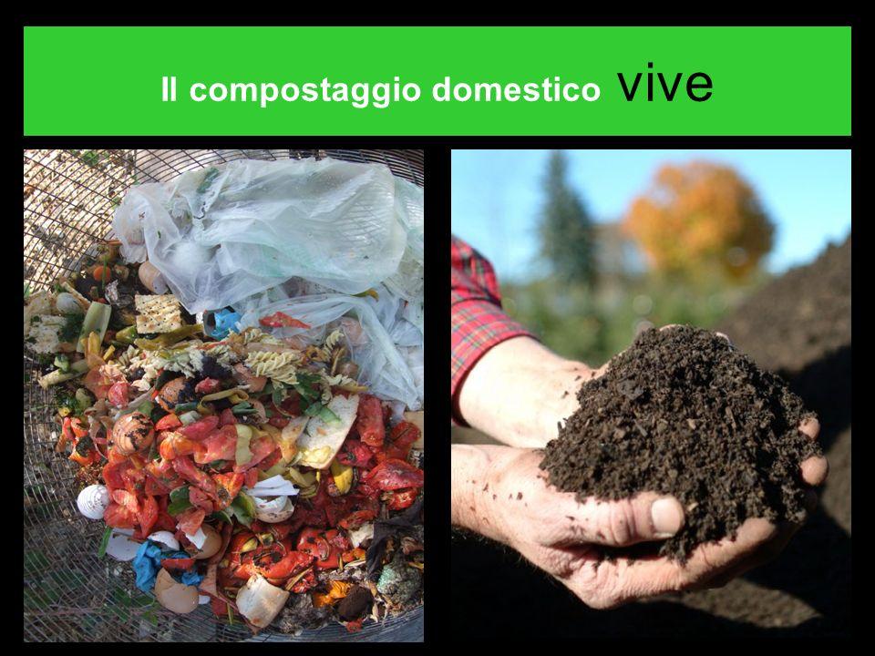 Il compostaggio domestico vive