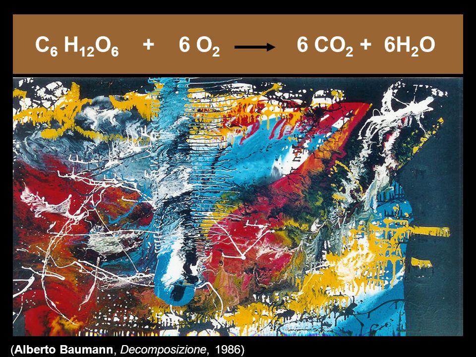 C 6 H 12 O 6 + 6 O 2 6 CO 2 + 6H 2 O (Alberto Baumann, Decomposizione, 1986)