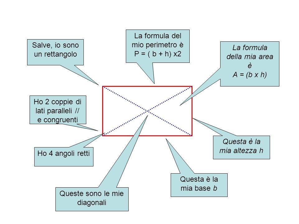 Salve, io sono un rettangolo Ho 2 coppie di lati paralleli // e congruenti Ho 4 angoli retti Queste sono le mie diagonali Questa è la mia base b Quest