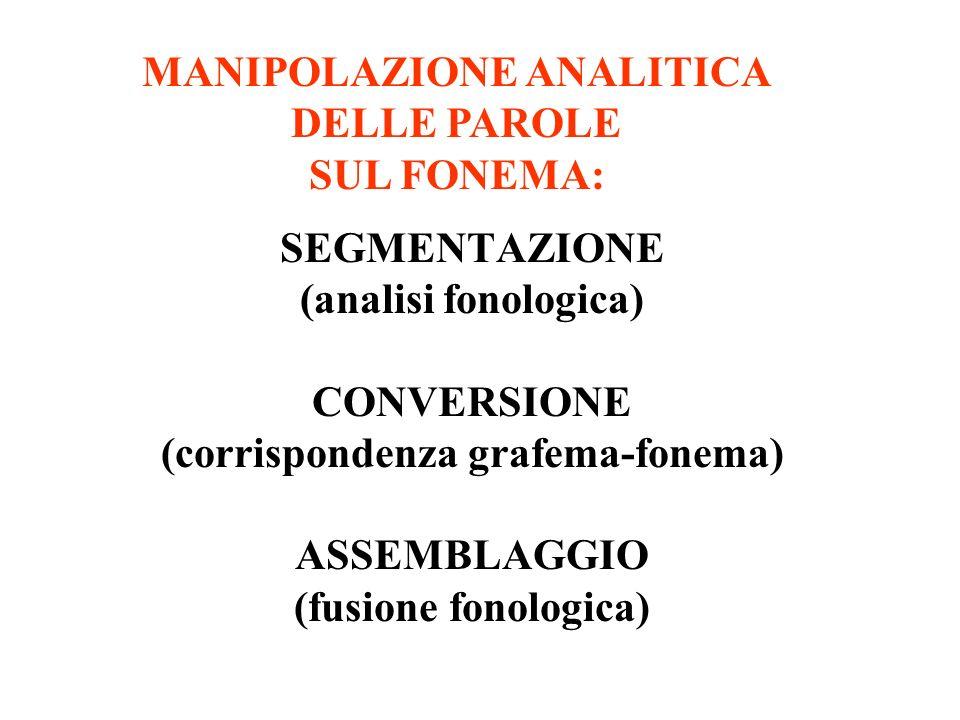 SEGMENTAZIONE (analisi fonologica) CONVERSIONE (corrispondenza grafema-fonema) ASSEMBLAGGIO (fusione fonologica) MANIPOLAZIONE ANALITICA DELLE PAROLE