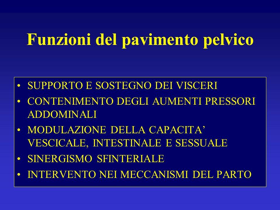ATTIVITA MOTORIE DEL PAVIMENTO PELVICO ATTIVITA AUTOMATICHE : ADATTAMENTI POSTURALI (COATTIVAZIONE TRA I GLUTEI, GLI ERETTORI SPINALI, PIRIFORMI).
