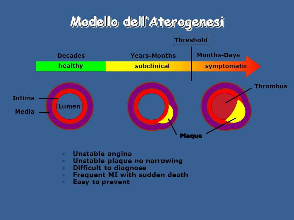 Modello dellAterogenesi healthy subclinicalsymptomatic Threshold DecadesYears-Months Months-Days Intima Media Plaque Thrombus Lumen Unstable angina Unstable plaque no narrowing Difficult to diagnose Frequent MI with sudden death Easy to prevent
