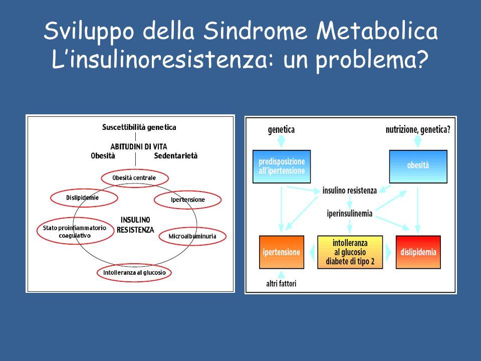 Sviluppo della Sindrome Metabolica Linsulinoresistenza: un problema?