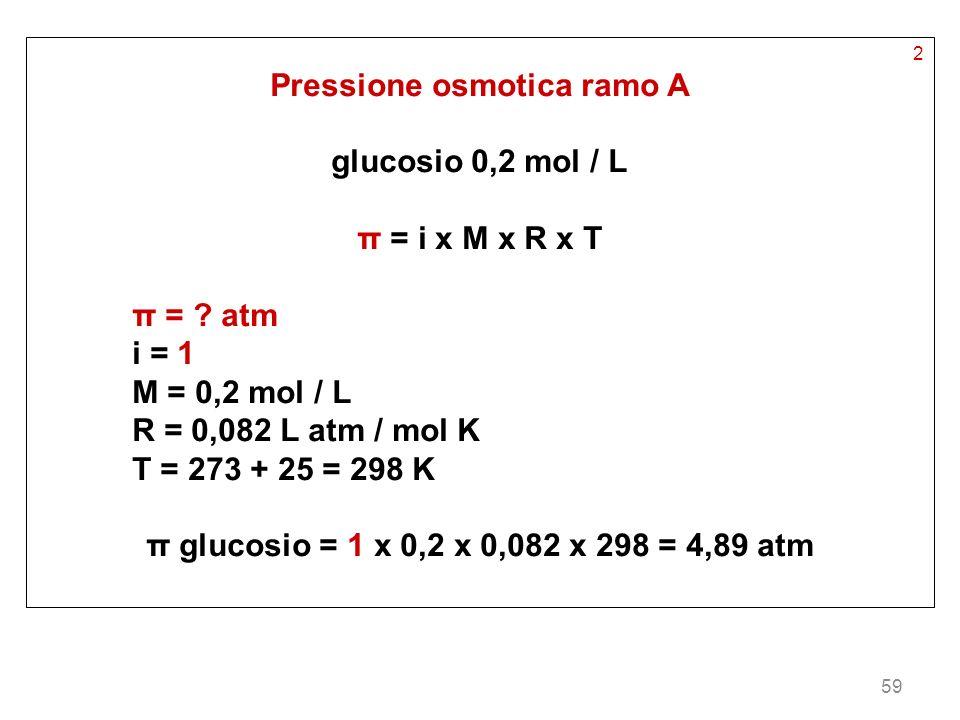 59 2 Pressione osmotica ramo A glucosio 0,2 mol / L π = i x M x R x T π = ? atm i = 1 M = 0,2 mol / L R = 0,082 L atm / mol K T = 273 + 25 = 298 K π g