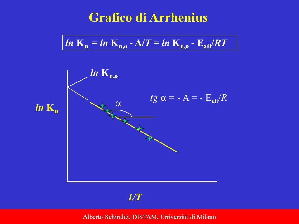 Alberto Schiraldi, DISTAM, Università di Milano Grafico di Arrhenius ln K n = ln K n,o - A/T = ln K n,o - E att /RT ln K n 1/T tg = - A = - E att /R l