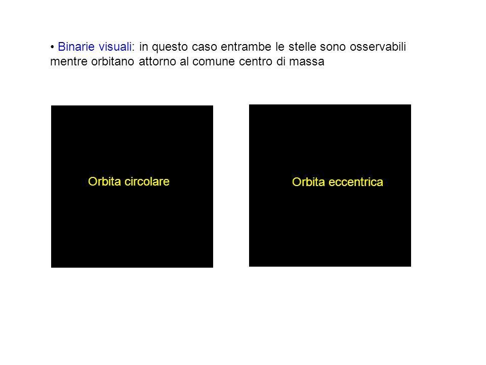 Binarie visuali: in questo caso entrambe le stelle sono osservabili mentre orbitano attorno al comune centro di massa Orbita circolare Orbita eccentri