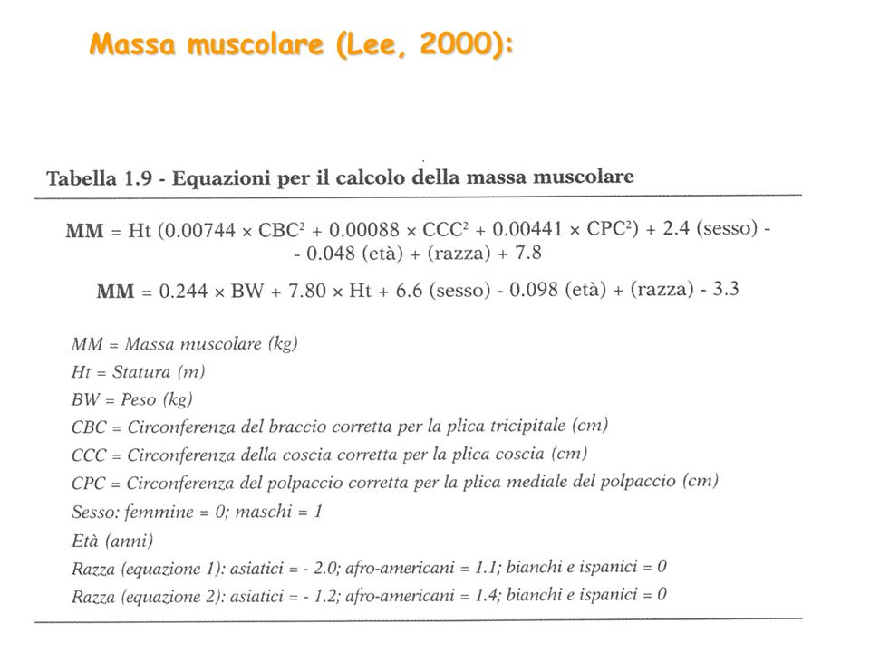 Massa muscolare (Lee, 2000):