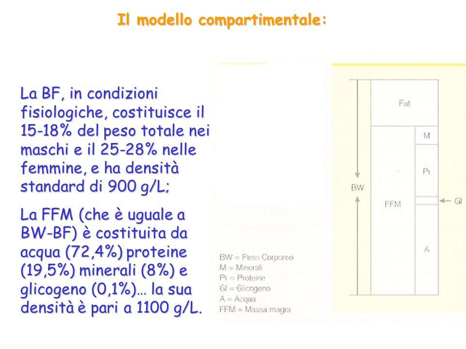 Il modello compartimentale: La BF, in condizioni fisiologiche, costituisce il 15-18% del peso totale nei maschi e il 25-28% nelle femmine, e ha densità standard di 900 g/L; La FFM (che è uguale a BW-BF) è costituita da acqua (72,4%) proteine (19,5%) minerali (8%) e glicogeno (0,1%)… la sua densità è pari a 1100 g/L.