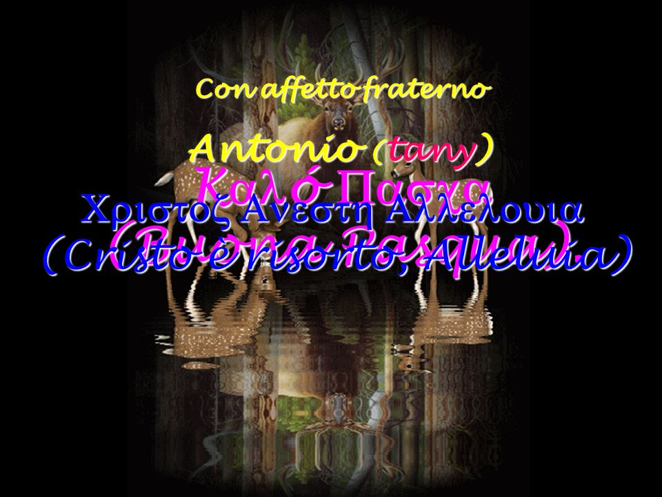 Con affetto fraterno Antonio ( tany) K ó (Buona Pasqua). (Cristo è risorto, Alleluia) (Cristo è risorto, Alleluia)