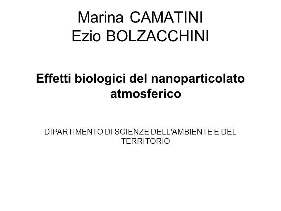 Marina CAMATINI Ezio BOLZACCHINI Effetti biologici del nanoparticolato atmosferico DIPARTIMENTO DI SCIENZE DELL AMBIENTE E DEL TERRITORIO