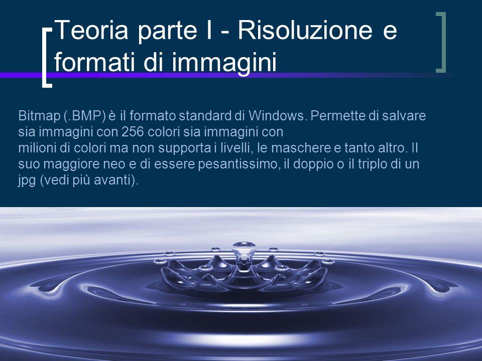 Bitmap (.BMP) è il formato standard di Windows.