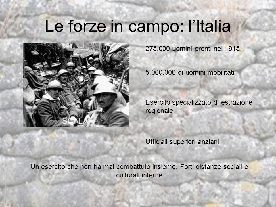 Le forze in campo: lItalia 275.000 uomini pronti nel 1915 5.000.000 di uomini mobilitati Esercito specializzato di estrazione regionale Ufficiali supe